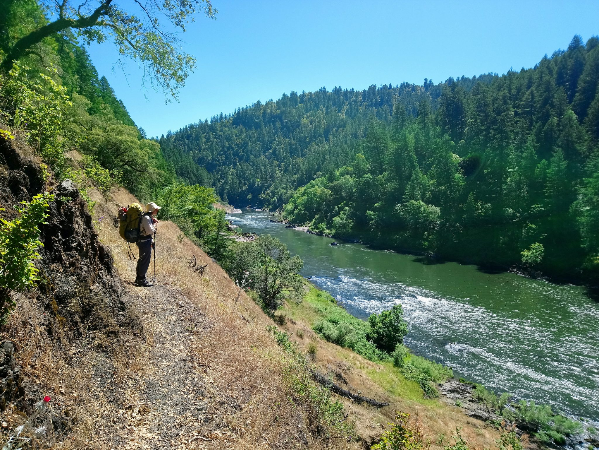 The Rogue River Trail