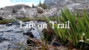 A Pacific Crest Trail Documentary