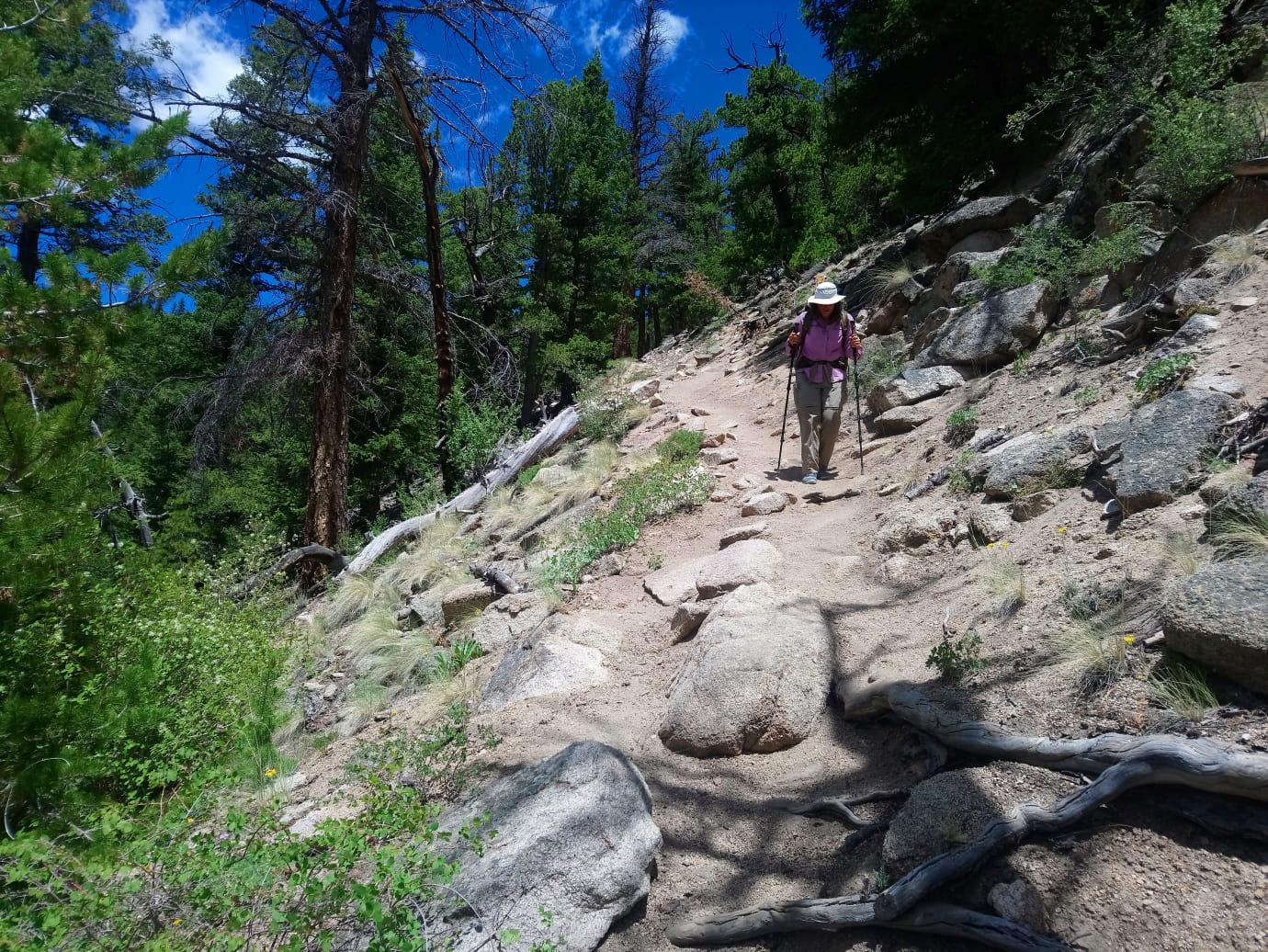 Mt. Yale Ridge